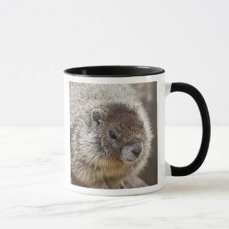 Marmot at Palouse Falls State Park Mug