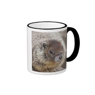 Marmot at Palouse Falls State Park Ringer Mug