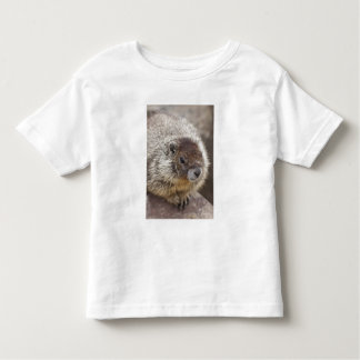 Marmot at Palouse Falls State Park T-shirt