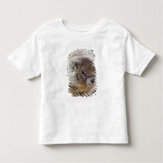 Marmot at Palouse Falls State Park Tee Shirt