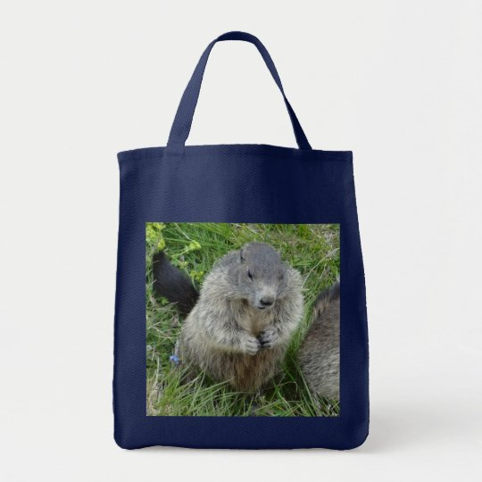 Marmot bags - choose style & color