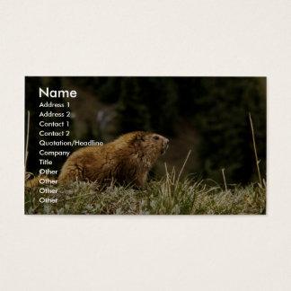 Marmot Business Card