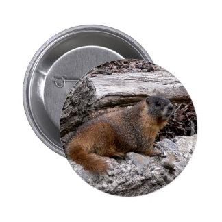 Marmot Pinback Buttons