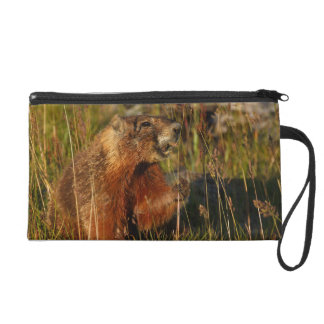 marmot eating grass wristlet purses