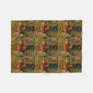 marmot eating grass fleece blanket