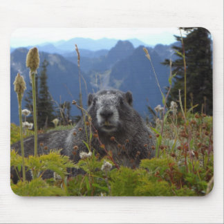marmot in paradise mouse pad