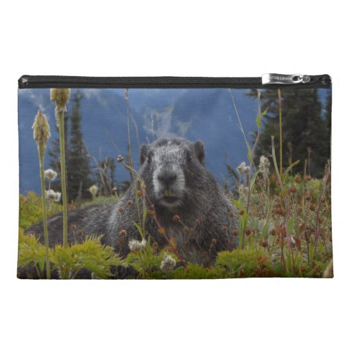 Marmot In Paradise Travel Accessory Bags