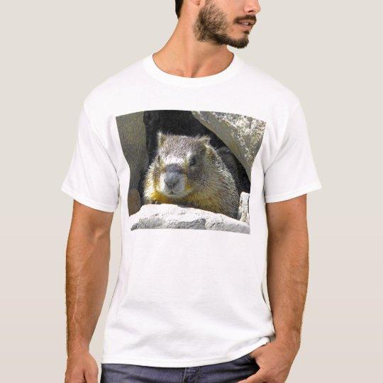 Marmot in Rock Den T-shirt