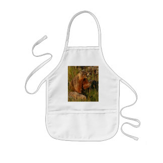marmot kids' apron