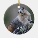 marmot Double-Sided ceramic round christmas ornament
