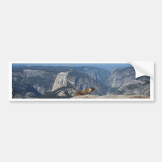 Marmot Overlooking Half Dome from Clouds Rest - Yo Bumper Sticker