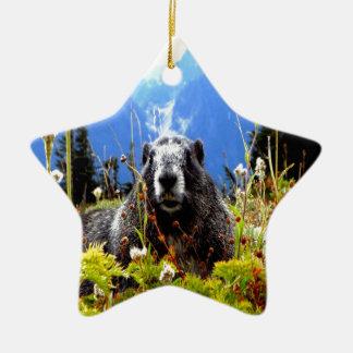 marmot peace and calm ceramic ornament