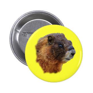 Marmot Portrait Pinback Button