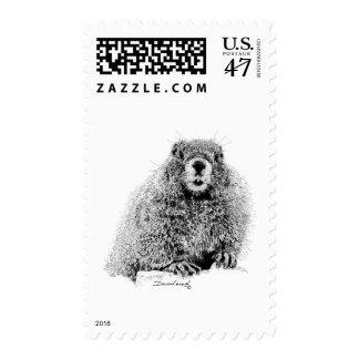 Marmot Stamp