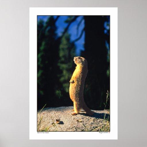 Marmot Sun Salute Posters