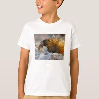 Marmot T-Shirt