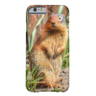marmota Amarillo-hinchada por una foto de la fauna Funda De iPhone 6 Barely There
