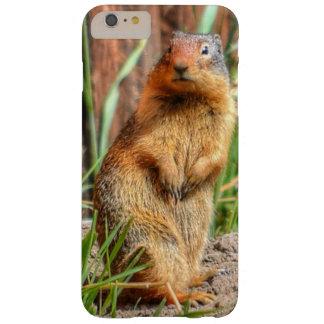 marmota Amarillo-hinchada por una foto de la fauna Funda De iPhone 6 Plus Barely There