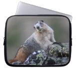 marmota de Alaska Funda Ordendadores