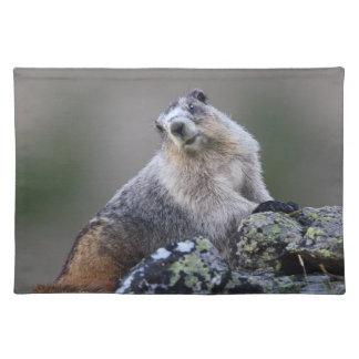 marmota de Alaska Mantel Individual
