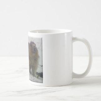 Marmota del invierno taza de café