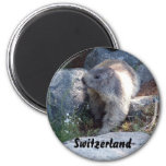 Marmota linda Suiza Imán Para Frigorífico