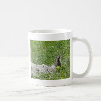 marmotas taza