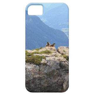 Marmotas y valle de Fassa iPhone 5 Funda