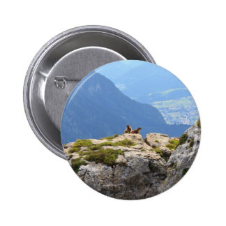 Marmots and Fassa Valley Button