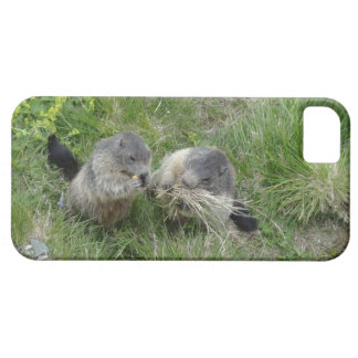 Marmots iPhone cases