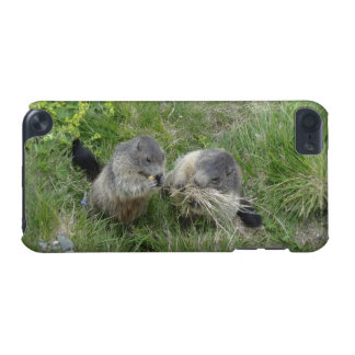 Marmots iPod Touch case