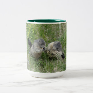 Marmots mugs - choose style & cxolor