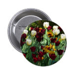 Maroon and Yellow Tulips Colorful Floral Button