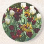 Maroon and Yellow Tulips Colorful Floral Coaster
