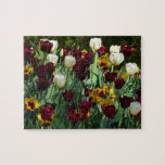 Maroon and Yellow Tulips Colorful Floral Jigsaw Puzzle