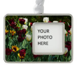 Maroon and Yellow Tulips Colorful Floral Ornament