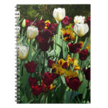 Maroon and Yellow Tulips Colorful Floral Spiral Notebook