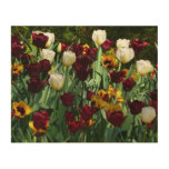 Maroon and Yellow Tulips Colorful Floral Wood Print
