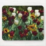 Maroon and Yellow Tulips Mousepad