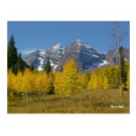 Maroon Bells Series #4, Autumn Reflection. Post Card