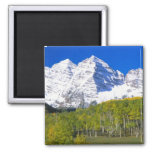 Maroon Bells with autumn aspen forest. 2 Inch Square Magnet