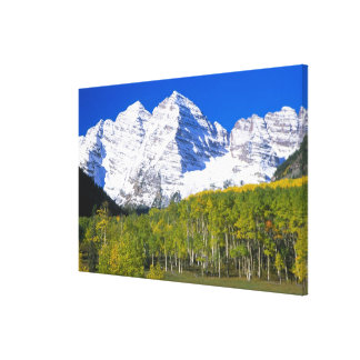 Maroon Bells with autumn aspen forest. Canvas Print