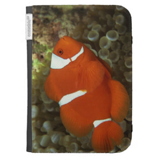 Maroon clownfish with sea anemone case for kindle