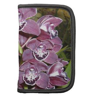 Maroon_Coloured_Orchids, _ Planificador