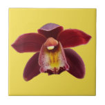 Maroon Orchids I Beautiful Red Floral Ceramic Tile
