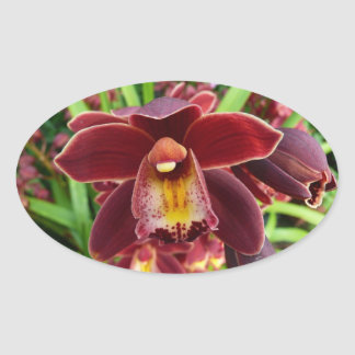 Maroon Orchids I Beautiful Red Floral Oval Sticker