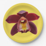 Maroon Orchids I Beautiful Red Floral Paper Plate