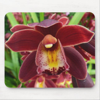 Maroon Orchids I Mouse Pad