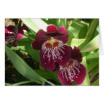 Maroon Orchids II Elegant Floral Card