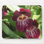 Maroon Orchids II Elegant Floral Mouse Pad